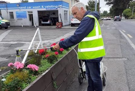 Tidy Towns Tralee